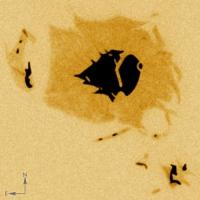 NOAA 10775, tache solaire