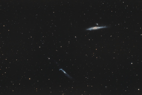 NGC 4631 + NGC 4656